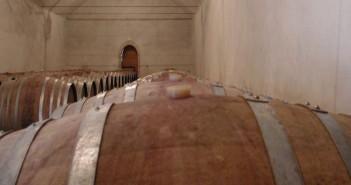 Un'azienda agricola vitivinicola umbra