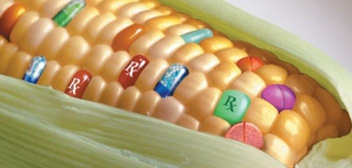 La qualità della regolazione per la qualità del cibo